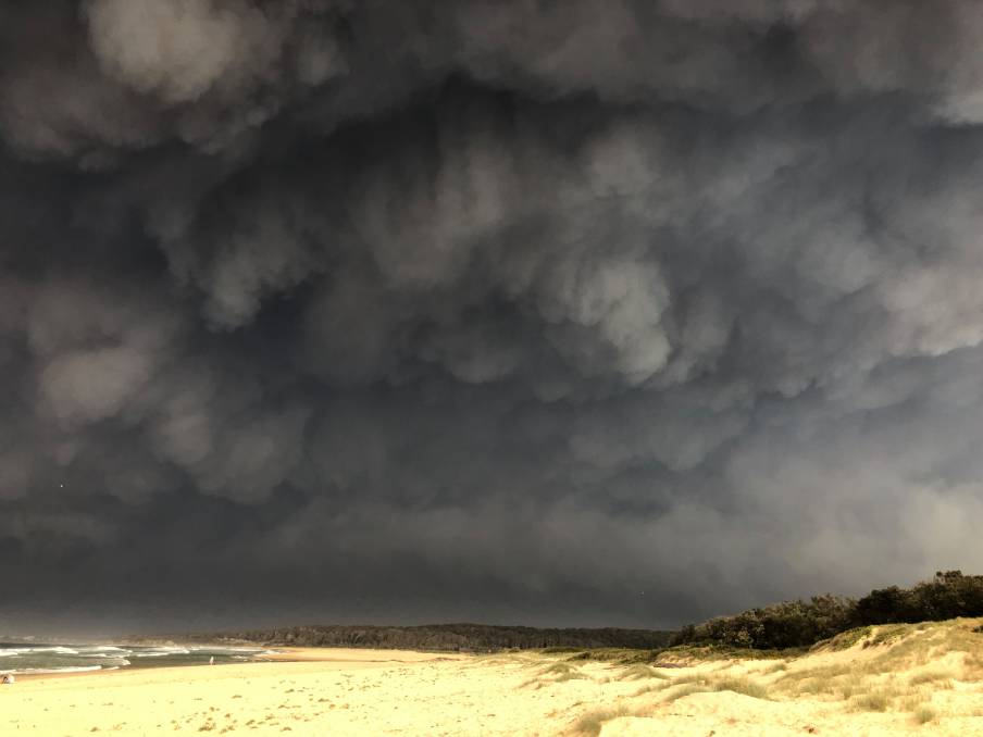 One year since the South Coast bushfires: our editors reflect